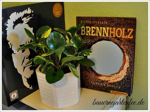 Buchtipp: Dieter Biernath: Brennholz - Technik & Ästhetik. Foto: Petra A. Bauer 2015