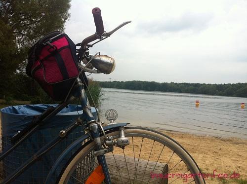 Wieder die Havel, wieder an einer anderen Stelle. 30. August 2012