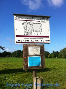 RBB Rinderproduktion Berlin Brandenburg