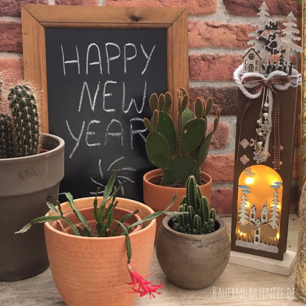 Happy New Year 2019! Foto und Setup: Petra A. Bauer 2109.