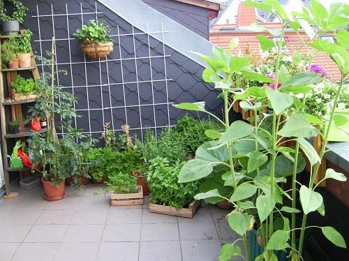 Leipziger Dachterrasse