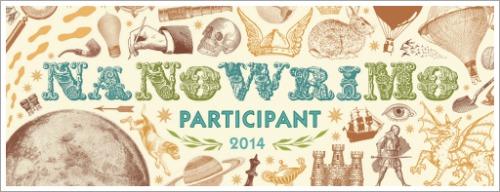 NaNoWriMo-Teilnehmerin 2014