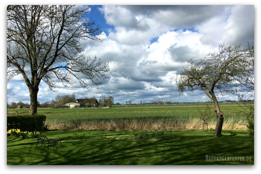 Landschaft in Dithmarschen. Foto: Petra A. Bauer, April 2017