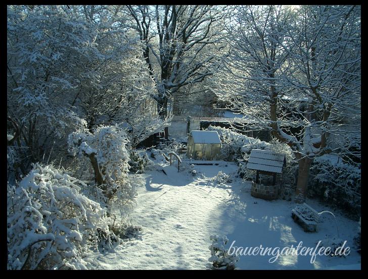 Gartenübersicht Januar 2009