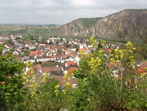 Blick von der Ebernburg
