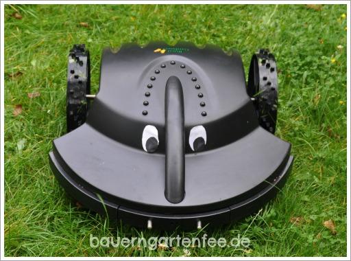 Der vollautomatische Royal Gardineer Mähroboter in der Lord-Helchen-Bauerngartenfee-Version. Augen und Foto: Petra A. Bauer
