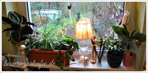 Minidschungel mit Brunnen auf dem Fensterbrett im Büro.