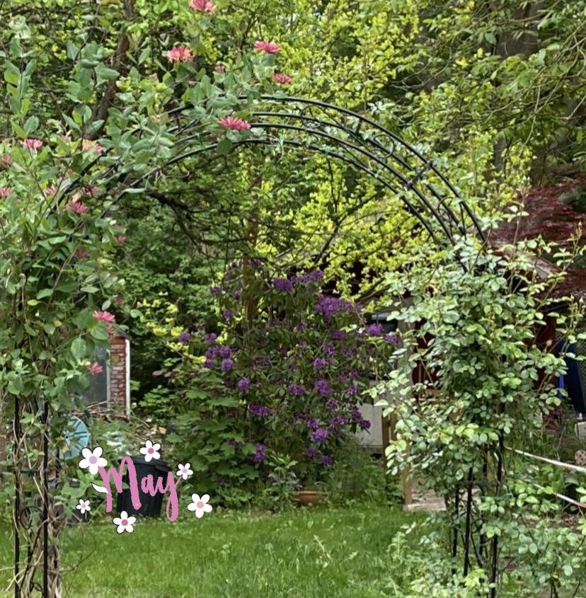 Blick in den Bauerngartenfee-Garten. Foto: Petra A. Bauer, Mai 2020.