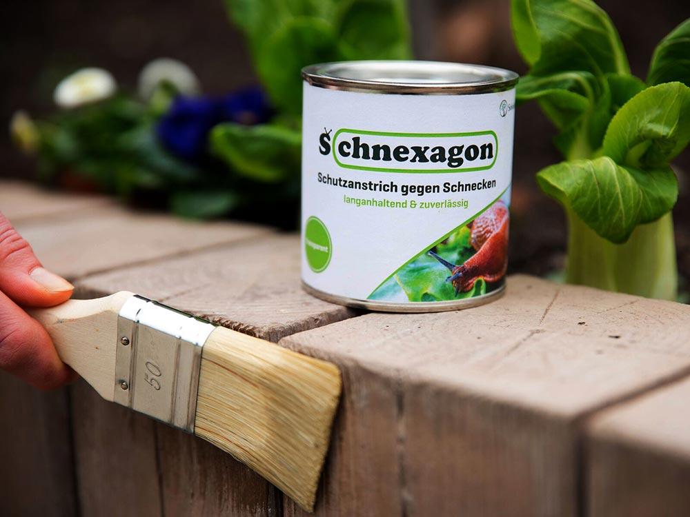 Schnexagon - ökologischer Anstrich gegen Schnecken. Foto: Lugato