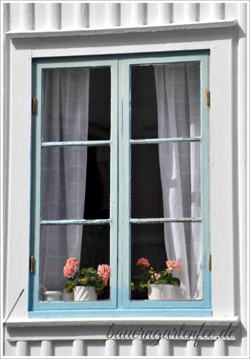 Blumenfenster in Fjällbacka