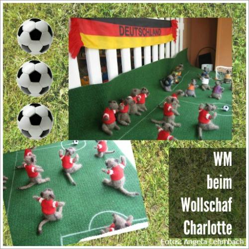 Das Wollschaf Charlotte. Schaufenstergestaltung mit fußballspielenden Erdmännchen.